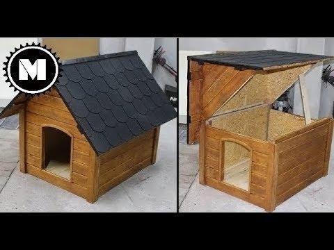 Buda dla psa - budowa